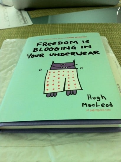 "My latest book launches today: ""Freedom Is Blogging In Your Underwear"""
