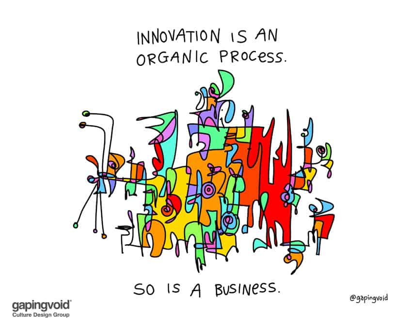 innovation is an organic process