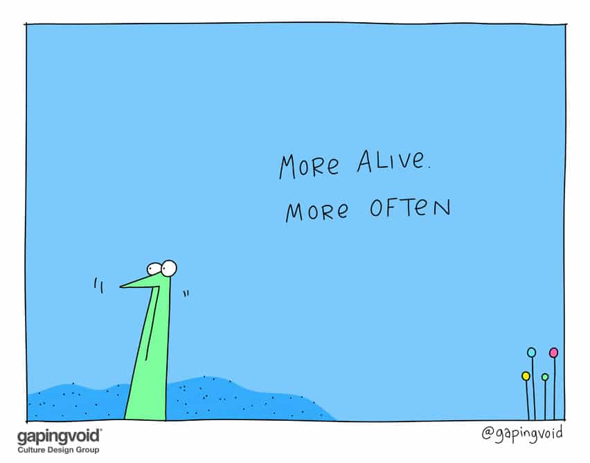 more alive more often